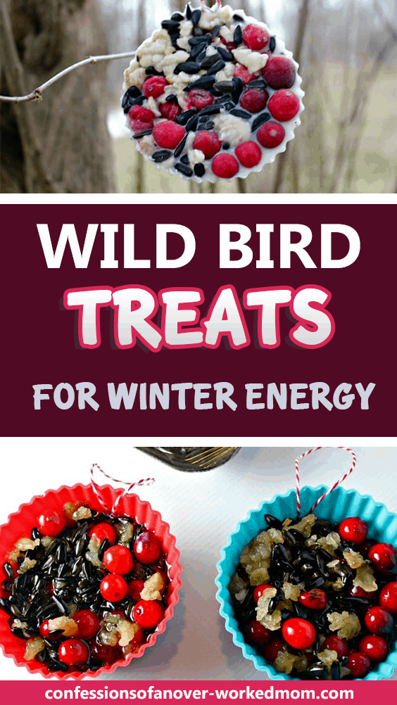 That's where these wild bird treats for winter energy come in handy.My husband and I love feeding the birds and watching them through the kitchen window. One of the benefits of living in the country is that we have a lot of birds and wildlife to enjoy.
