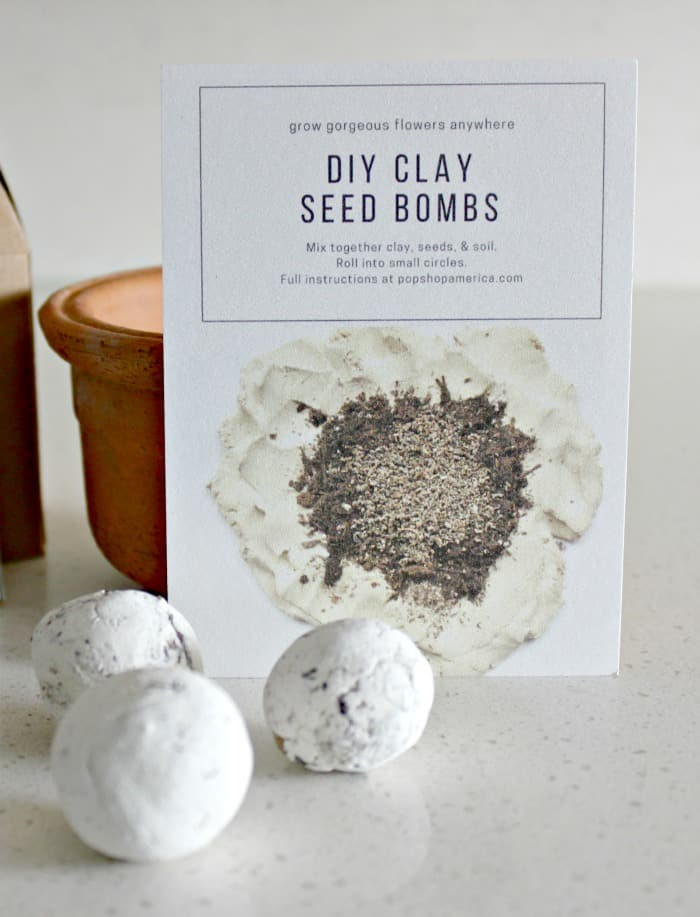 Have you ever wondered how to use seed balls? I've seen seed ball recipes on Pinterest before but I have never been quite sure how to use them.